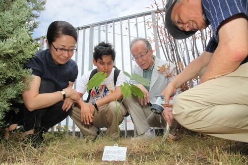 シアターセブン植樹2.JPG