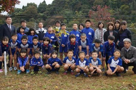 飯石小学校&アオギリ2.jpg