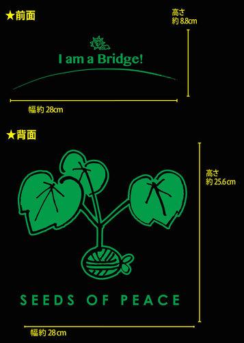 image_002.jpg